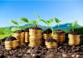 NASDAQ:  Green 401(k)s